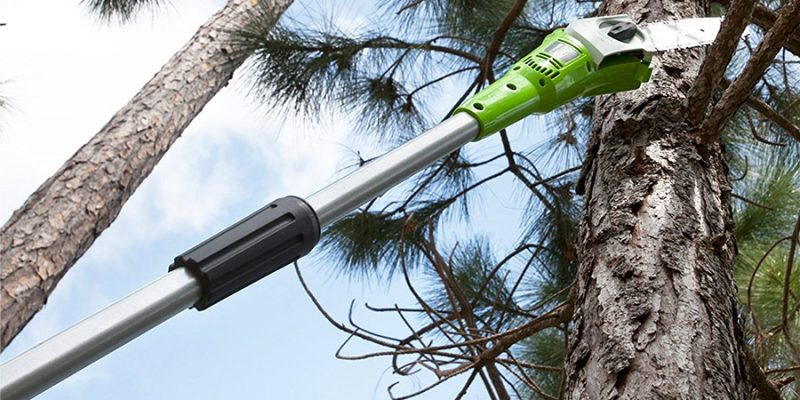 comprar podadora Greenworks Tools 2000107